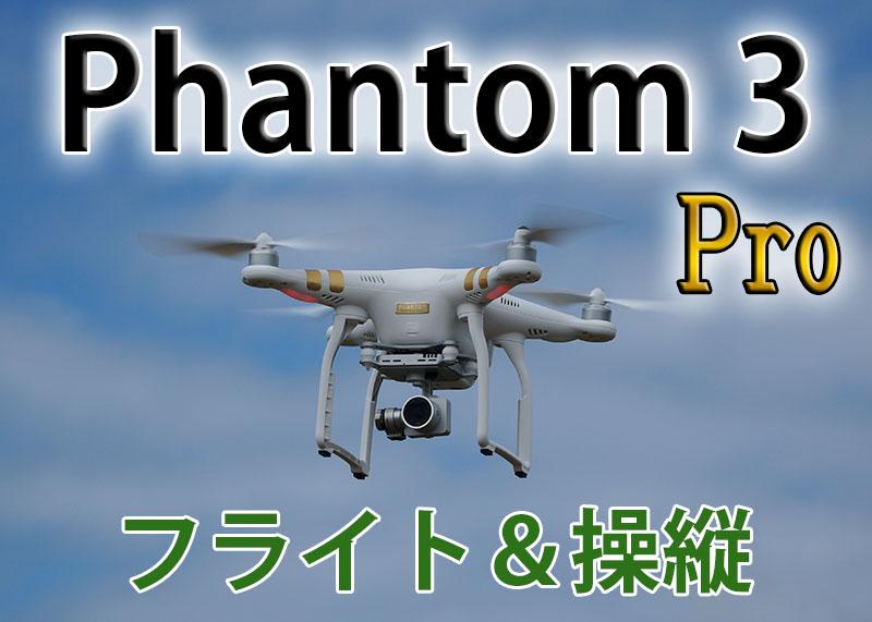 Phantom 3 Professional フライト&操縦とキャリブレーション